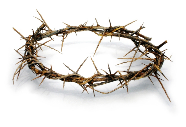 crown of thorns-1