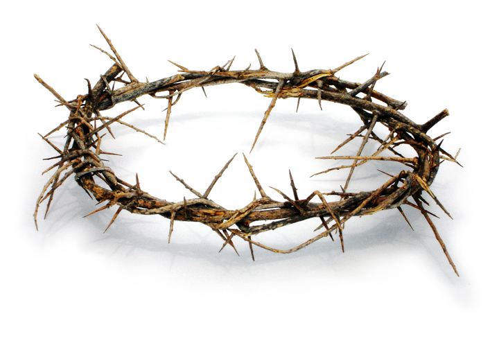The Crown Of Thorns That Jesus Wore For You