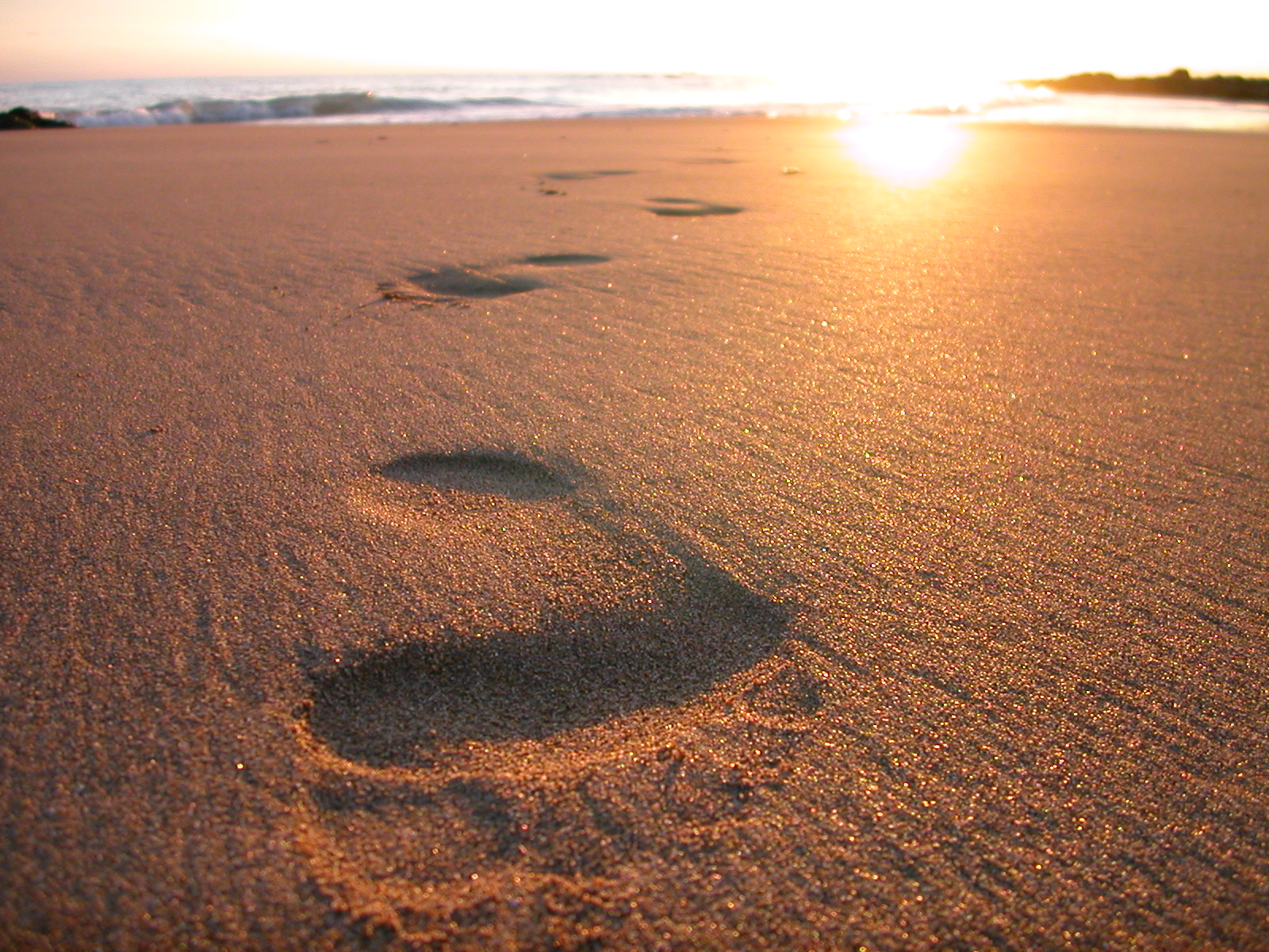 footsteps in the sand-2 | Reflections in The WORD