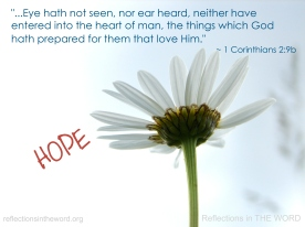 1 Corinthians 2:9b
