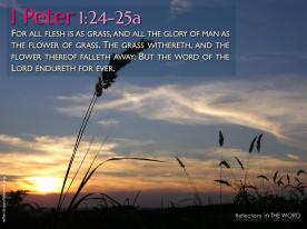 1 Peter 1:24-25a