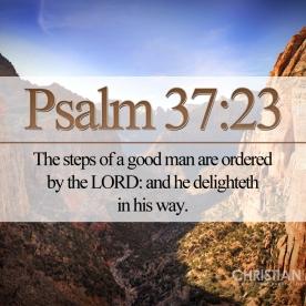 Proverbs 37:23