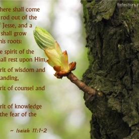 Isaiah 11:1-2