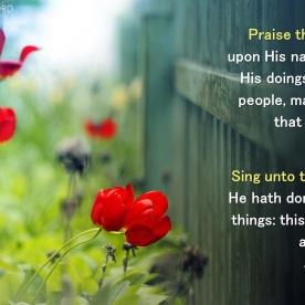 Isaiah 12:3b-5
