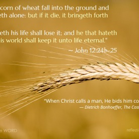 John 12:24b-25