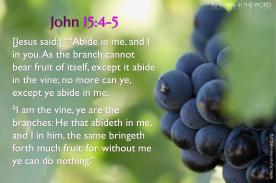 John 15:4-5