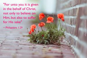 Philippians 1_29
