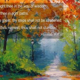 Proverbs 4:11-12