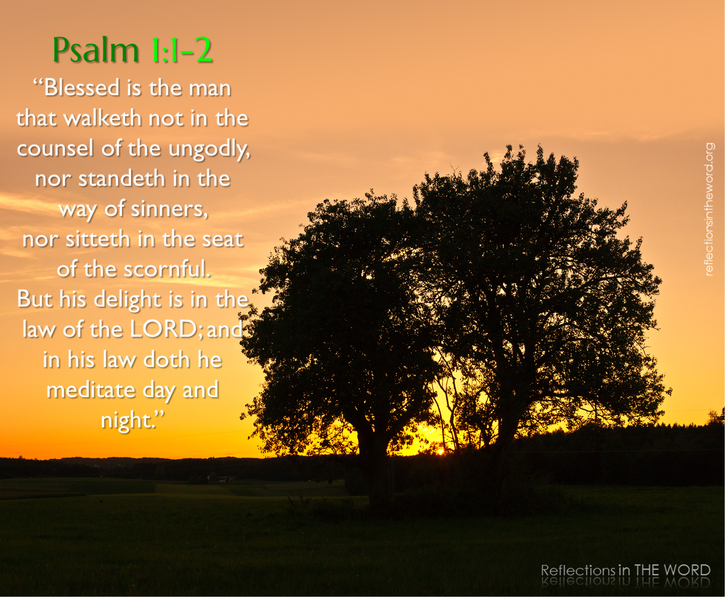 psalm 1 1 u00262 reflections in the word