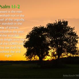 Psalm 1:1-2