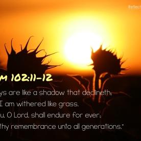 Psalm 102:11-12