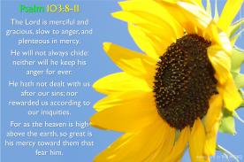 Psalm 103:8-11