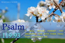 Psalm 119:93