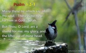 Psalm 3:2-3