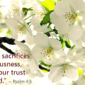 Psalm 4:5