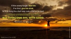Romans 12:20b-21