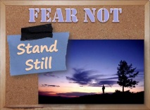FEAR NOT: Stand Still