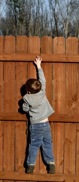 boys climbing fence_cropped-1