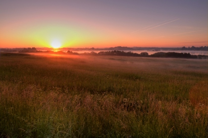 sunrise meadow-1