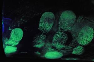 fingerprints-3