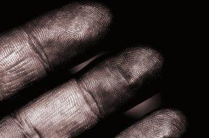 hand w. fingerprints
