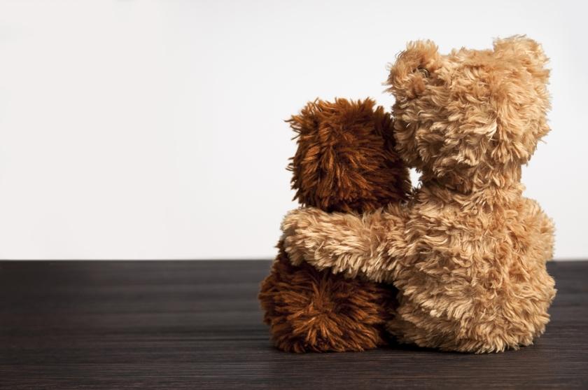 comfort bears-1