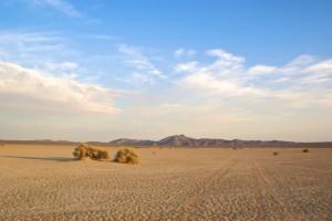 tracks-in-desert