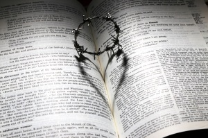 bible+heart-shadow-1_reduced-35-of-original